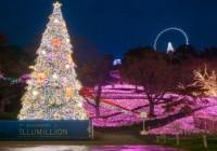 Sagamiko Winter Illumination