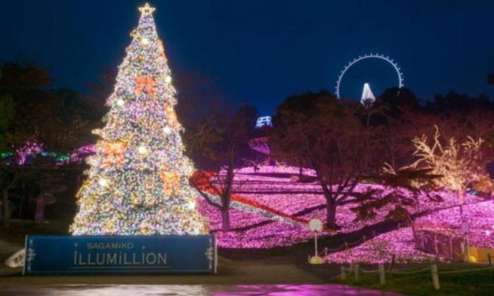 Enjoy Beautiful Winter Illumination & View Mt Fuji from Kawaguchi